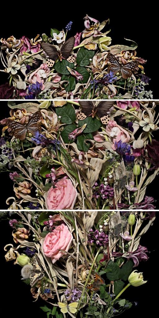 Anne Schubert Blumenstilleben #1 2014 80 cm x 120 cm 3-teilig Auflage 5 +1